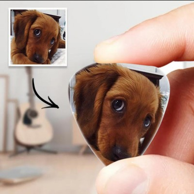 Personalized Guitar Pick with Photo For Pet Dogs